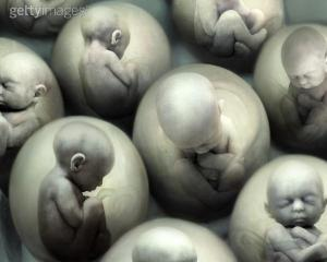 aborto-i