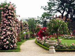 88 el mayordomo de herodes cronicadeunatraicion - El jardin mediterraneo ...