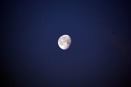 1luna_creciente