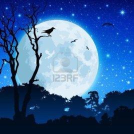 8984562-un-paisaje-de-bosques-con-la-luna-y-el-cielo-nocturno