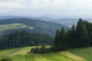 -paisaje-de-montana