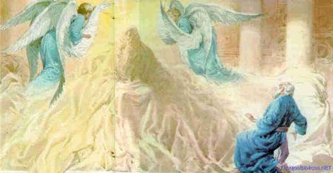 15unge-profeta
