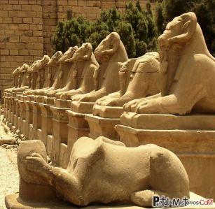 carneros-templo-amon