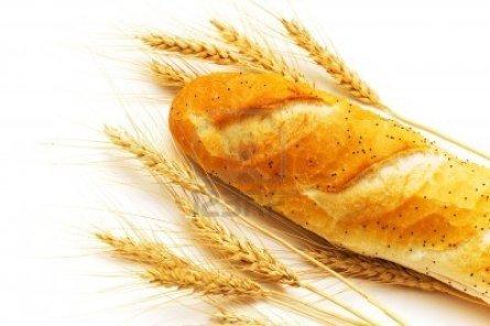 -pan-de-trigo-