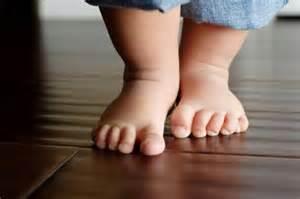 pequeño-caminante
