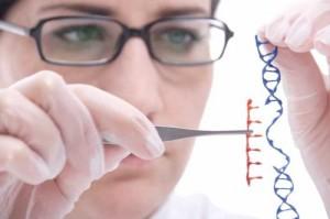 MANIPULANDO ADN