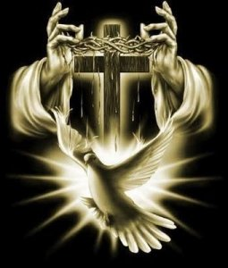 16ales-espiritu-santo_1_754204