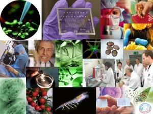 BIOTECNOLOGIA1