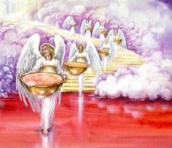 Copas-de-la-ira-de-Dios