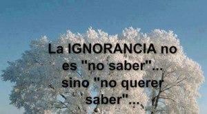 frase_ignorancia