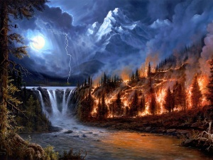 incendio-en-el-bosque