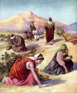 dios alimenta a su pueblo con el maná