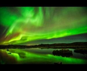 aurora__