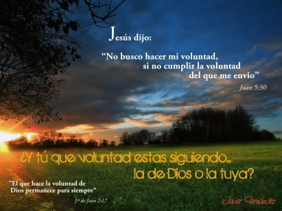 La-voluntad-de-Dios