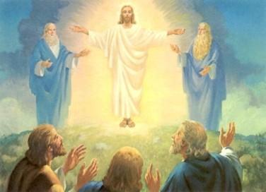 transfiguration2