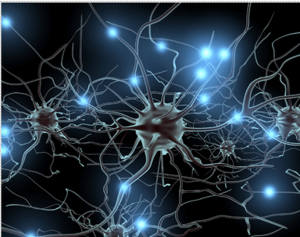 imagemain_neurons[1]_redimensionar