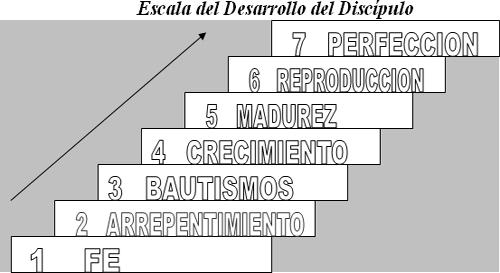 desarrollo-del-discipulo-1-2_25258_17_1