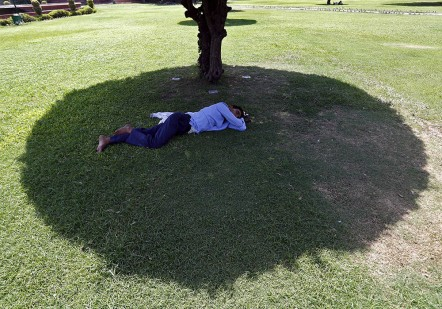 A man sleeps under the shade of a tree on a hot summer day at a public park in New Delhi, India, May 27, 2015. Soaring temperatures have gripped parts of southern and northern India in an extreme heat wave which has killed more than 500 people and looks set to continue this week, officials said on Monday. REUTERS/Anindito Mukherjee  - RTX1EQO9