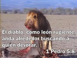 leon1