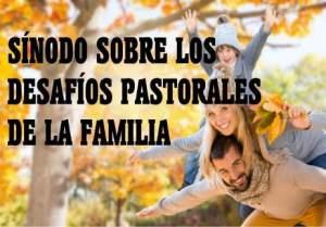 desafios-pastorales-de-la-familia-cristiana