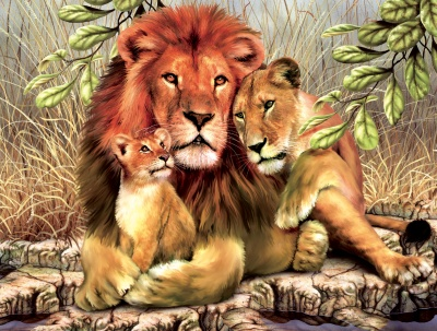 familia-de-felinos-leones1-