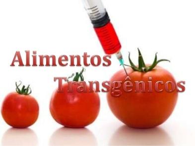 alimentos-transgnicos-1-638
