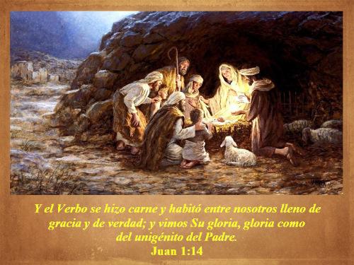 jesus-carne-luz