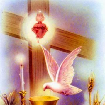 cruz y cor.esp santo