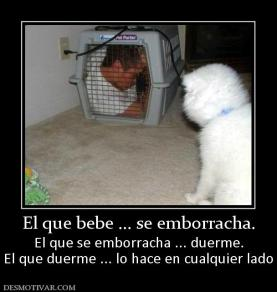 44222_el_que_bebe__se_emborracha