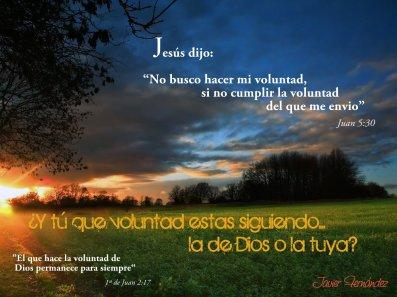 -voluntad-de-Dios