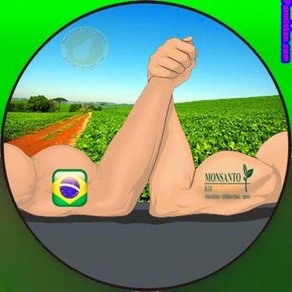 00Monsanto-Brazil-Farmers_graphic