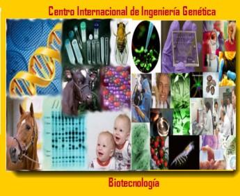 centro_internacional_de_ingenieria_genetica