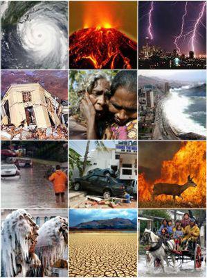 collage-desastres