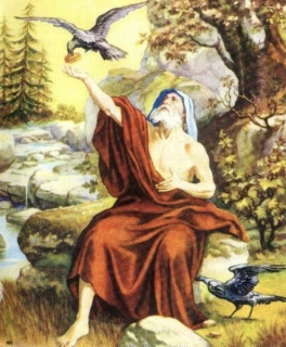 elias alimentado pelos corvos