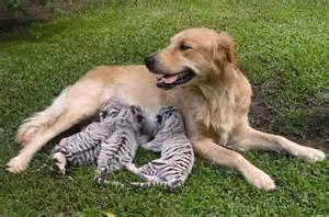 00madre adoptiva