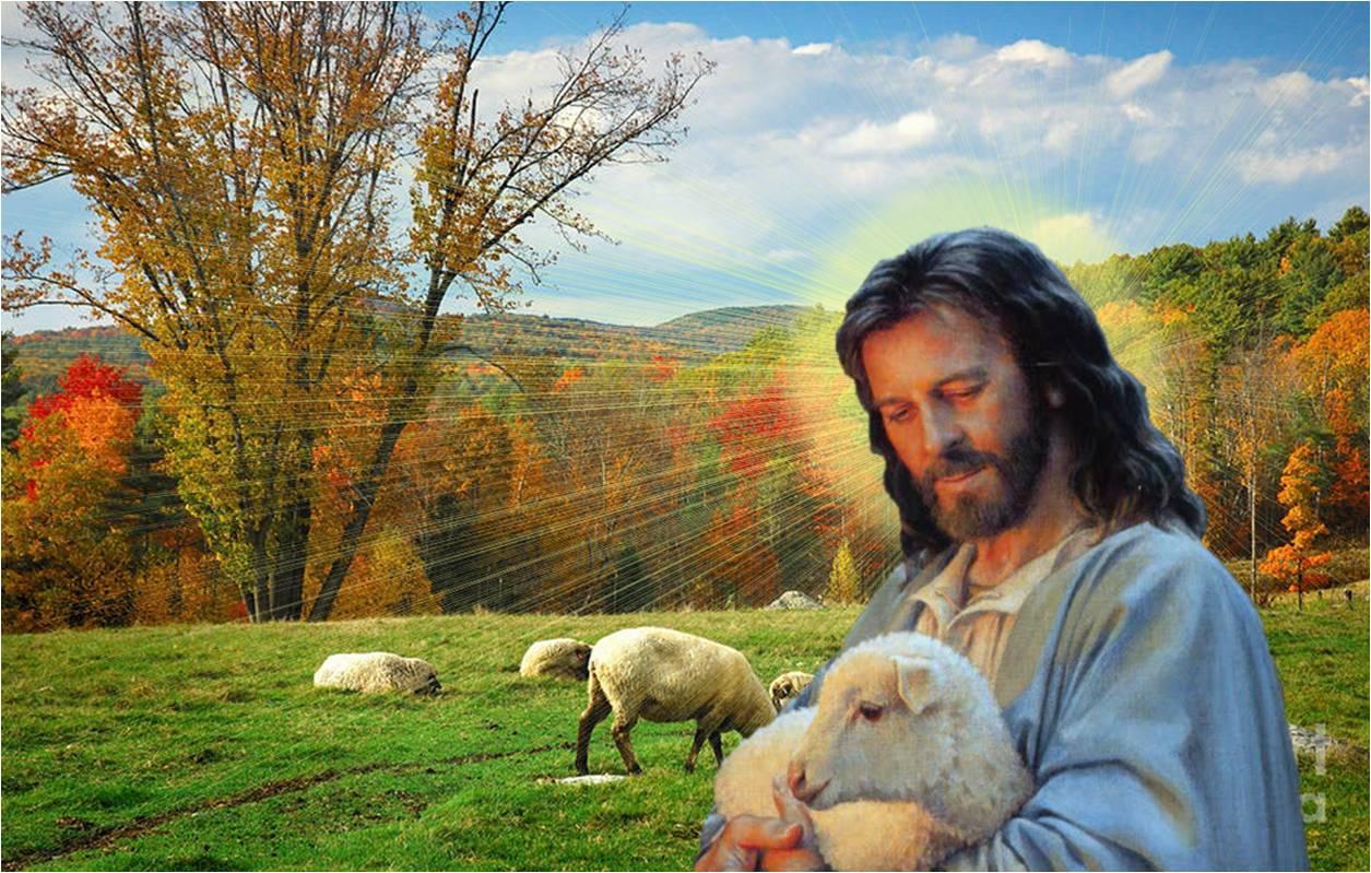 REY PADRE Y PASTORjesus_good_shepherd_christ_sheep_abstract_hd-wallpaper-1780709