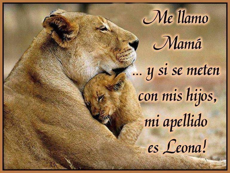 leona-con-cachorro