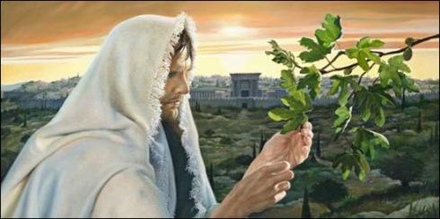 32. «De la higuera aprended esta parábola: cuando ya sus ramas están tiernas y brotan las hojas, sabéis que el verano está cerca.