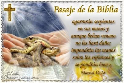 evangelio marcos
