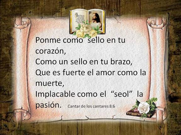 cantar08