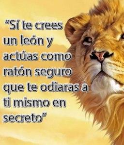 leon CONGRUENCIA