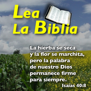 biblia eterna