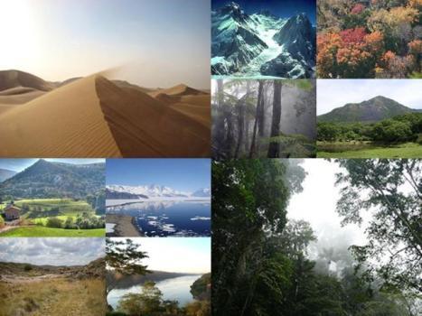collage CLIMA MUNDIAL