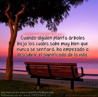 el_significado_de_la_vida-other