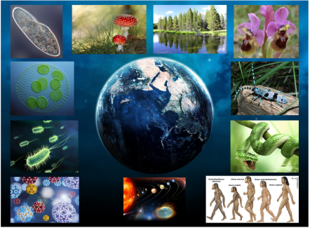 collage ciencia cnn