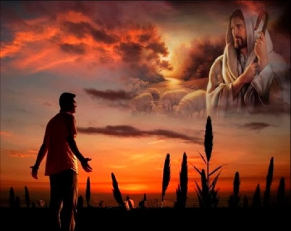 aveja y pastor