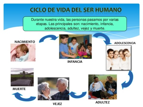 ciclo-de-vida-del-ser-humano-2-638