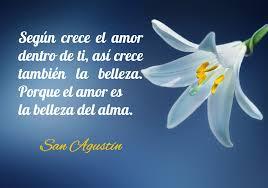 amor belleza alma