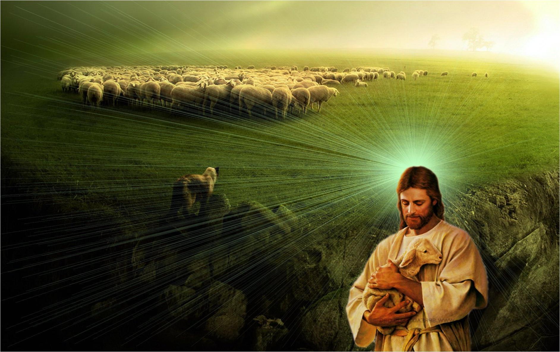 PASTOR rebaño de jesus