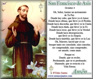 SAN FRANCISCO DE ASIS 11